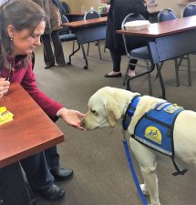Lycoming County Canine in the Courts Initiative